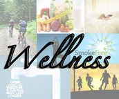 Wellness Activities During Lunches