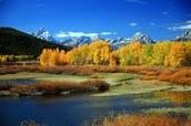 Beautiful Scenery from Yellowstone