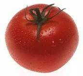 and fresh tomato's