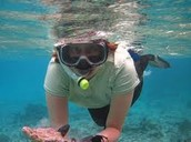 What is snorkelling?