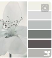 Bridesmaid Dress Color Palette