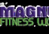 Magnus Fitness World