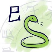 Zodiac Year of the Snake