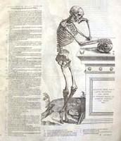 Epotiome (1543)