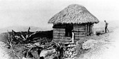 Thatched Wood Plank House, Barbados, 1898