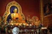 Questions About Buddhism