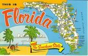 Orlando's Climate