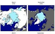Ice in Artic