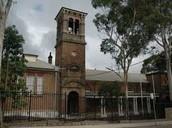 croydon puplic school