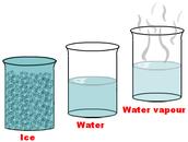 Water Matter