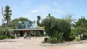 el zoológico-zoo