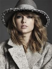 Taylor Swift Summary