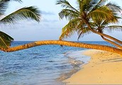 Come join us for 5 wonderful nights at the beachfront all-inclusive Now Larimar Punta Cana