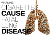 Save your lungs, save your life!