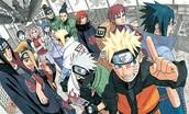 The Ninja Gang