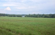 100 acres of Bottomland