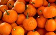 E3 - Pumpkin Patch