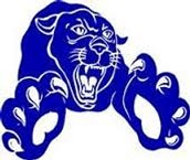 Panther Athletics