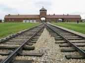 Auswitz concentration camp