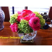 Some Updated Guidance On Finding Necessary Issues In Flower Delivery SF
