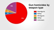 Too many dangerous people have acccess to guns and other assualt rifles.