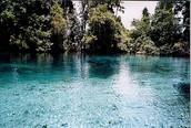Crstal River