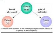 Kinds of Ions and How to Detemine Them