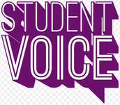 Student Voice at Bransford