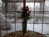 Wistful winters day!