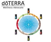 6 oils to help support 18 different feelings.