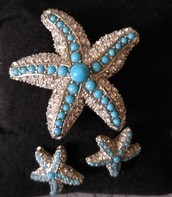 Starfish Brooch & Earrings