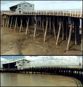 Tides Comparison