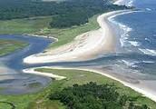Importance of estuaries