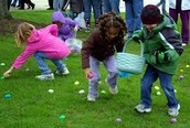 Egg Hunting !
