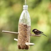 El Comedero para Pájaro