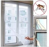 Screened windows!