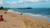 Coastal Plains