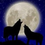 Howl at the Moon - A haunting experience