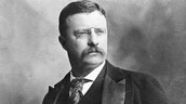 Theodore Roosevelt when he was in his presidency