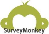 Supervisor Assessment Survey