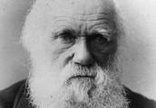 A Super Short(-ish) Biography of Charles Darwin
