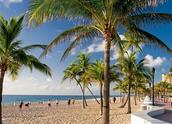 Fort Lauderdale looks yucky