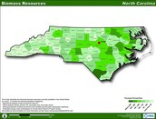 Biomass in NC
