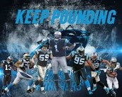 Carolina Panthers NFC Champions