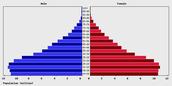 The Population Pyramid