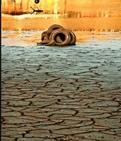 Remnants of lake lanier