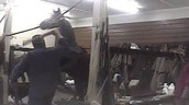 Horses Electrocuted, Beaten