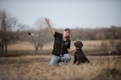 Bird Dog Demonstrations from Legend Working Dogs