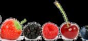Fruit...