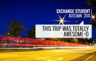 Feedback from previous trips